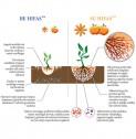 HIFAS - vaismedžiams ir uoginiams augalams, mikoriziniai grybai, 150 g