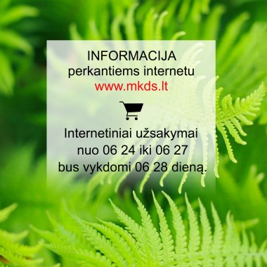 Informacija perkantiems internetu