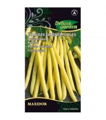 Žemaūgės daržinės pupelės Maxidor